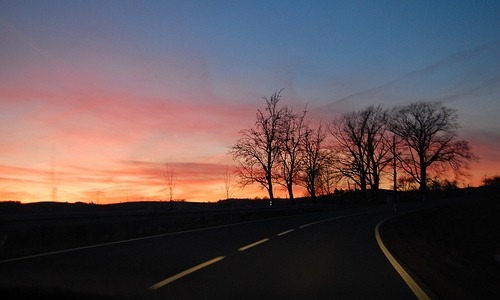 """Anthology Poet Highlight 16/82: Patricia Karamesines, """"Evening Drive"""" The lyric quality of """"Evening Drive"""" pulls me into the narrative, placing me in the (rhetorical) vehicle beside the poet and her companion as they drive down a springing lane, both traversing […]"""