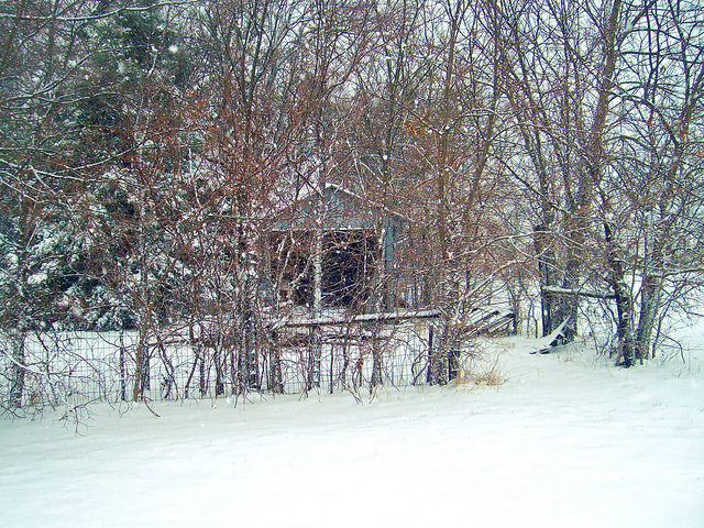 """Shed"" from lizradtkedesign on Flickr"